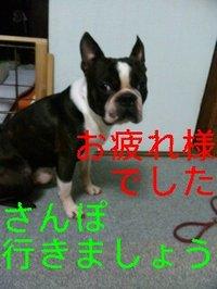 100909_162514_ed
